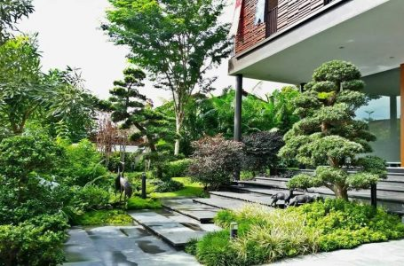 What Benefits Can a Professional Landscaping Company in Singapore Give You?