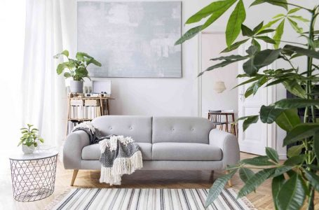 A guide to buying good furniture